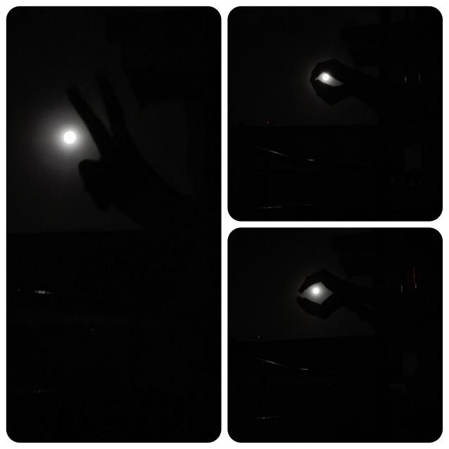 Full Moon Art Peace, Dove, Pearl in Oyster Hand model, Samia