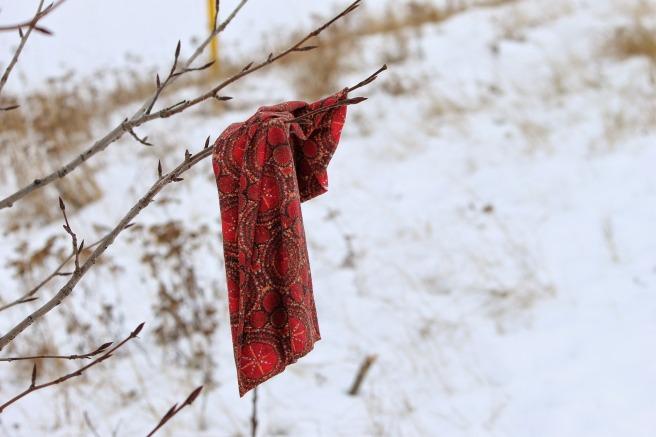 scarf-686781_1920