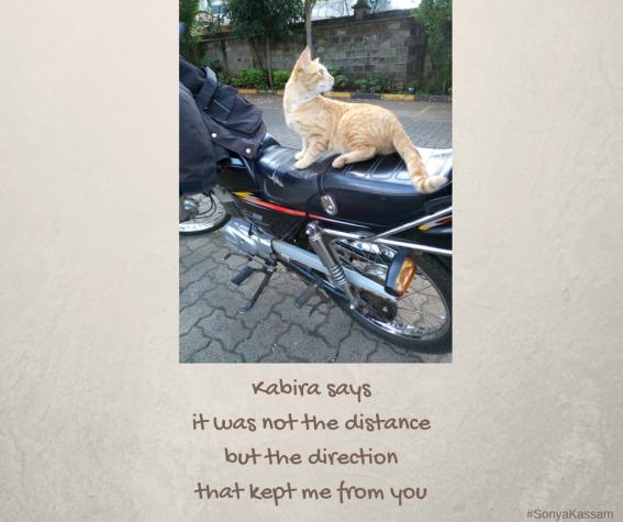 Kabira Says 3