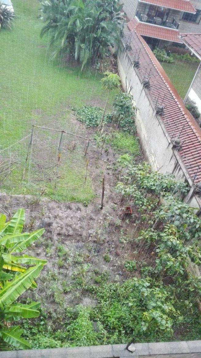 Nairobi Rain