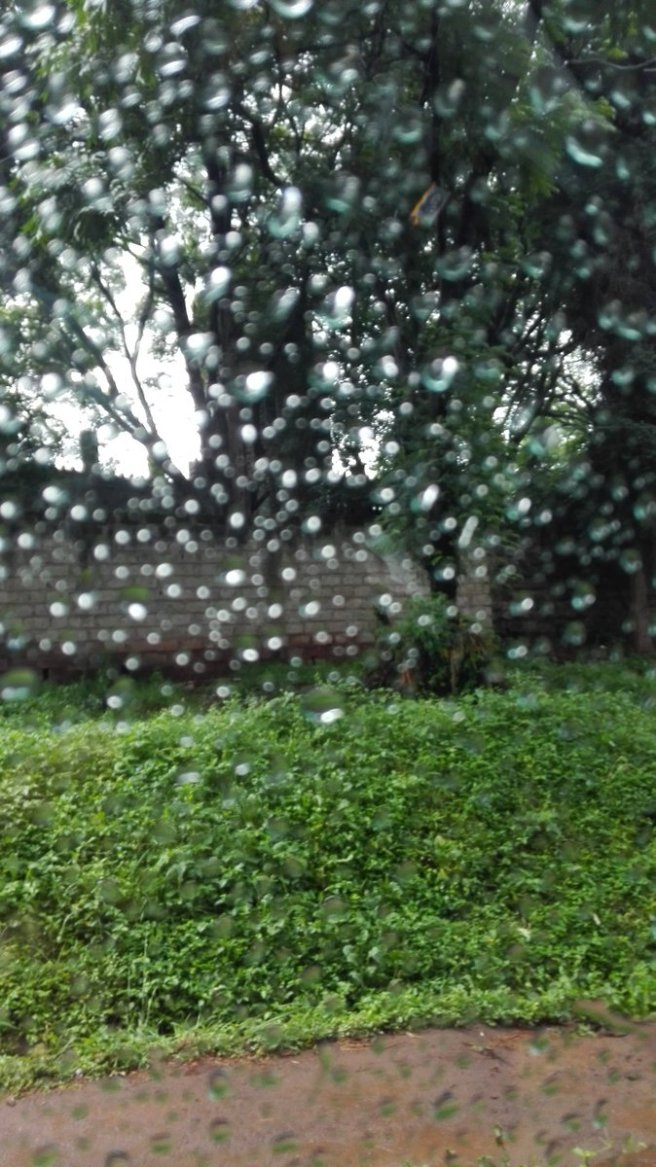 Memories of Nairobi Rain