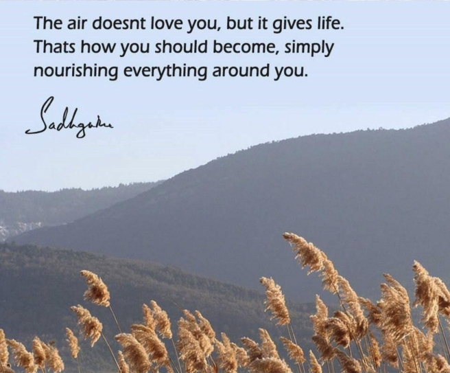Sadhguru Quote Poetry by Sonya Kassam